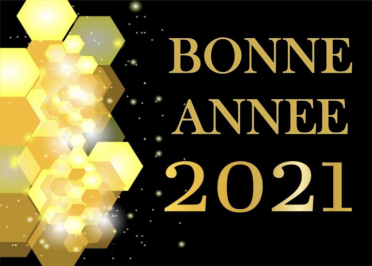 carte année 2021 docsdepub